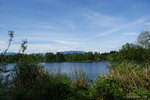 Deer Lake in Burnaby (12).jpg